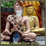 Sammi Law