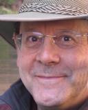 Hank Friedman